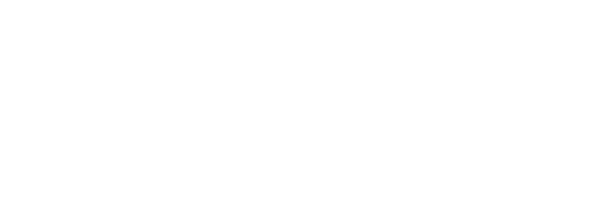 The Faces of The Palm Beaches